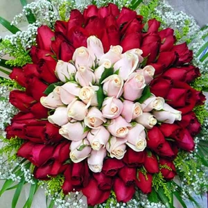 99 Roses ( 30 Champagne 69 Red ) Hand Bouquet
