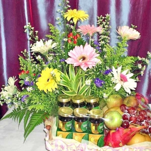 Gerbera Mixed with 6 Chicken Essence & Fruits