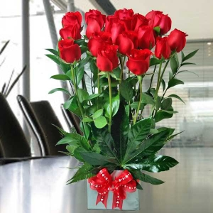 20 Red Roses Standing Bouquet
