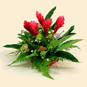 Red Ginger Flower Table Arrangement