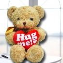 Add-On 25cm Hug Me Bear