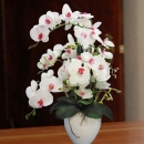 Artificial White Phalaenopsis Orchid Arrangement
