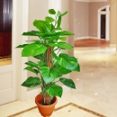 Artificial Money Plants 110cm Height