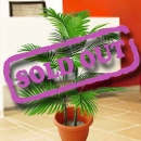 Artificial Areca Palm Tree 3 Feet Height
