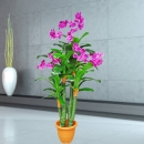Artificial Phalaenopsis Orchids Tree 168cm Height