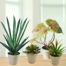 4 Artificial Plants