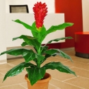 Artificial 3 Feet Height Ginger Flowering Plant