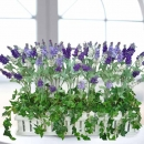 "Artificial Lavender Arrangement 24""Lx7""Wx12""H"