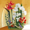 Aertificial Bird of Paradise Arrangement