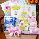 Baby Hamper BB001