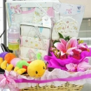 Baby Girl Gift Hamper BB099 Delivery