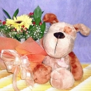 Flowers & Soft Toys