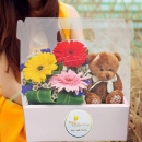 13cm Bear With Gerbera Flowers in Hand Carry Gift Box