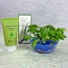 Soiless Live Money Plant with Aloe Moisture Peeling Gel