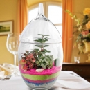 3 Mini Live Plants Terrarium in Glass Vase 45cm Height