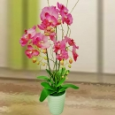 Artificial Pink Phalaenopsis Orchid Arrangement