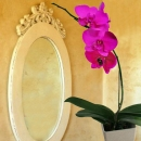 Glow in the dark Pink Phalaenopsis Orchid