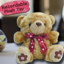 "Add-on 6"" Bear with Voice Recorder"