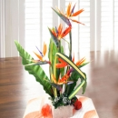 5 Bird of paradize Table arrangement