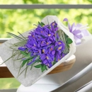 20 Blue iris handbouquet--Kindly order 2 days in advance