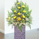 Yellow crysanthemun 5 feet height arrangement