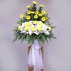 Yellow Gerbera and Pompom 6 feet arrangement