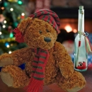 Christmas Bear 9 inches & Message in a Bottle