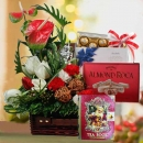Christmas Hamper & Gift Basket Delivery XM119